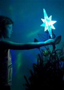 [image description: young child placing a lighted star upon a Christmas tree]